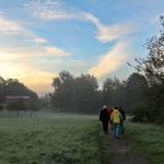 Morgentauwandern